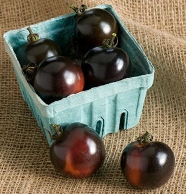 David's Garden Seeds Tomato Cherry Indigo Rose D3616A (Black) 25 Organic Seeds
