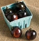 David's Garden Seeds Tomato Cherry Indigo Rose SL3616A (Black) 25 Organic Seeds