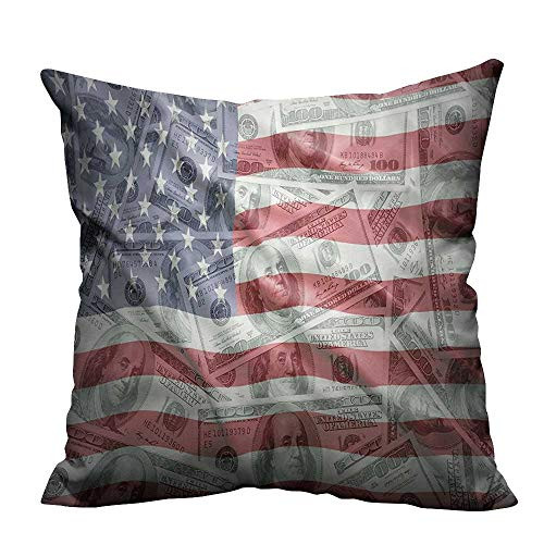 alsohome Throw Pillow Cover for Sofa American Dollar Flag Mey Currency Exchange Value Global Finance Textile Crafts 16x16 inch(Double-Sided Printing) ()