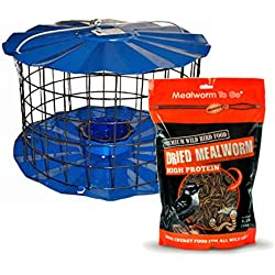 Erva Squirrel Proof Bluebird Bird Feeder Designed to Keep Starlings and Squirrels Out Bundled with 3.5 Oz Pack of Mealworm to Go - Attract Wild Birds to Your Backyard with This Outdoor Birdfeeder