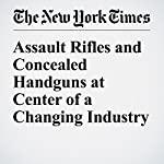 Assault Rifles and Concealed Handguns at Center of a Changing Industry | Barry Meier,Michael J. De La Merced