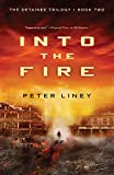 Into the Fire (Detainee)