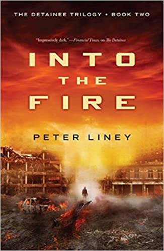 Into The Fire (The Detainee Series)