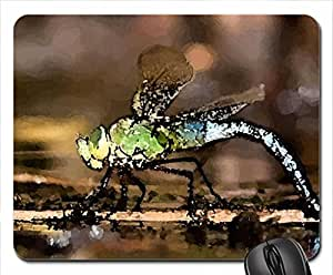 Dragon Fly Mouse Pad, Mousepad (10.2 x 8.3 x 0.12 inches)