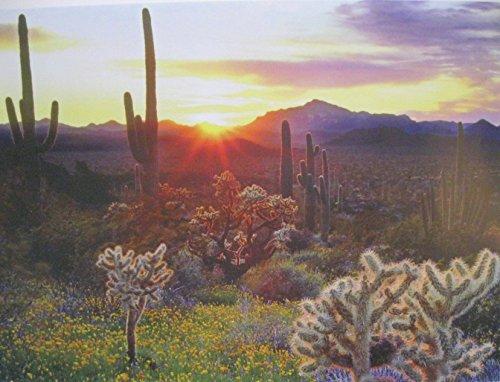 18 by 24 wall art poster beautiful southwest desert high resolution