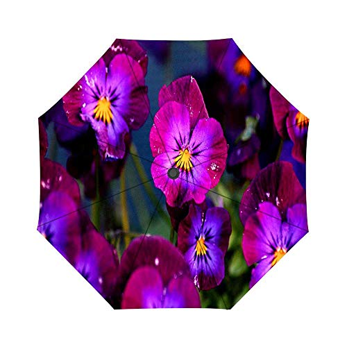 - Travel Umbrella Auto Open Compact Folding Sun & Rain Protection Umbrella with UV Protection Windproof - Pink Pansy Flowers