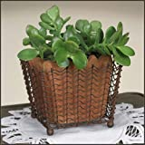 Cheap Square Wire Basket with Terra Cotta Pot in Green/Rust