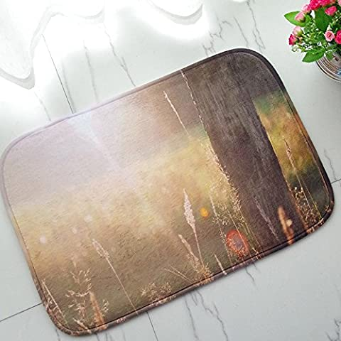 Flannel Sunshine Entrance Doormat Non-slip Shoe Scraper Doormat Carpet For Living Room Kitchen Indoor Outdoor - Shine Flannel