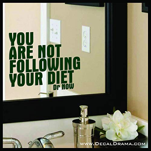 You are not Following Your Diet, Body Positive Mirror Motivator Decal (My 600 Lb Life Dr Nowzaradan Diet)