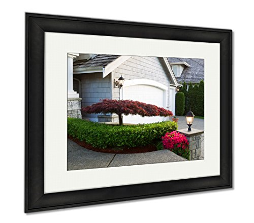 Ashley Framed Prints Blooming Japanese Maple Tree In Front Of Home, Office/Home/Kitchen Decor, Color, 30x35 (frame size), Black Frame, AG6537379 Bedroom Maple Poster Bed