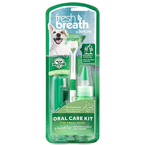 Fresh Breath Toothbrush (Tropiclean Fresh Breath Plaque Remover Pet Oral Care Kit, Small)