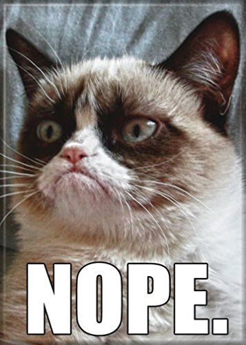 (Ata-Boy Grumpy Cat 'Nope' 2.5