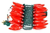 Sival - 35 Light 13.5' Green Wire Red Chili Pepper String