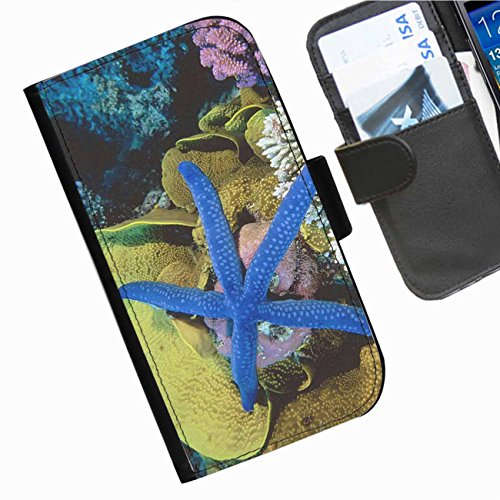 Starfish Clasp (Hairyworm - Blue starfish on colourful coral Apple iPod touch (6th generation) leather side flip wallet case, cover with card slots, money slot and magnetic clasp to close.)