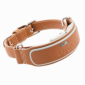 LINK AKC Smart Dog Collar – GPS Location Tracker, Activity Monitor, and More, Leather Medium (KITTN02)