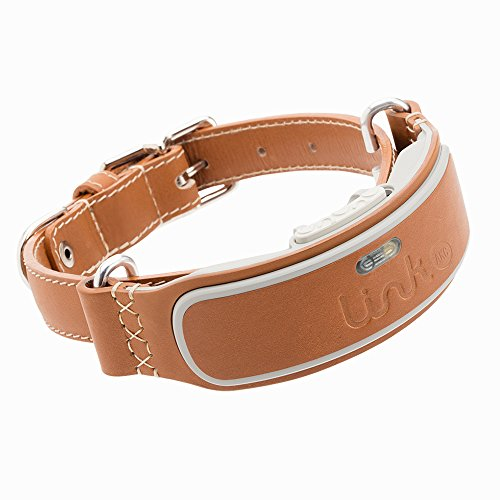 (Link AKC Smart Dog Collar - GPS Location Tracker, Activity Monitor, and More, Leather Extra-Large (KITTN04))