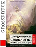 Gewitter im Mai (Großdruck): Erzählung aus den Bergen