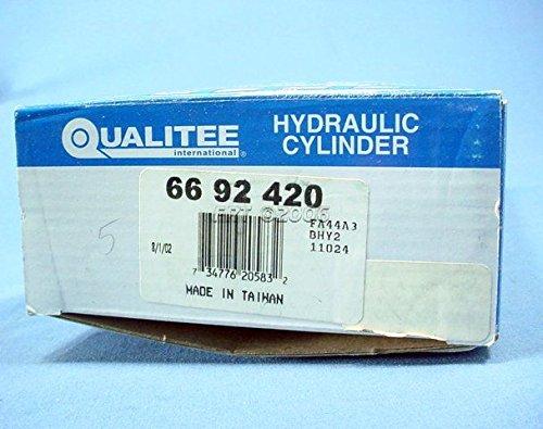 Qualitee International Parts 66-92-420 New Master Cylinder