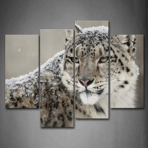 First Wall Art - Snow Leopard Look Back Snow Wall Art Painting The Picture Print On Canvas Animal Pictures For Home Decor Decoration Gift by Firstwallart