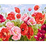 """COLORWORK DIY Paint by Numbers, Canvas Oil Painting Kit for Kids & Adults, 16"""" W x 20"""" L Drawing Paintwork with Paintbrushes, Acrylic Pigment-Flying Flower"""