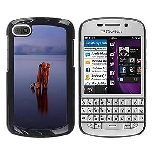 TopCaseStore / la caja del caucho duro de la cubierta de protección de la piel - Calm lake - BlackBerry Q10