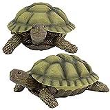 Best Garden Statues - Design Toscano Gilbert the Box Turtle Garden Decor Review