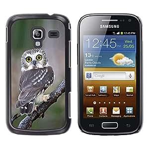 Be Good Phone Accessory // Dura Cáscara cubierta Protectora Caso Carcasa Funda de Protección para Samsung Galaxy Ace 2 I8160 Ace II X S7560M // owl surprised feathers nature wings