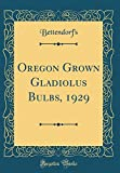 Amazon / Forgotten Books: Oregon Grown Gladiolus Bulbs, 1929 Classic Reprint (Bettendorfs Bettendorfs)