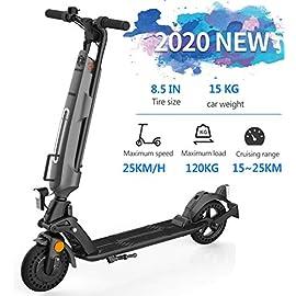 PINENG Scooter électrique Pliable avec pneus Pleins de 8.5 Pouces, Moteur de 250w à moyeu sans balais, 3 Vitesses jusqu'à 25km/h, 3-5 Heures de Charge, Port de Charge USB intégré, Travail des Adultes