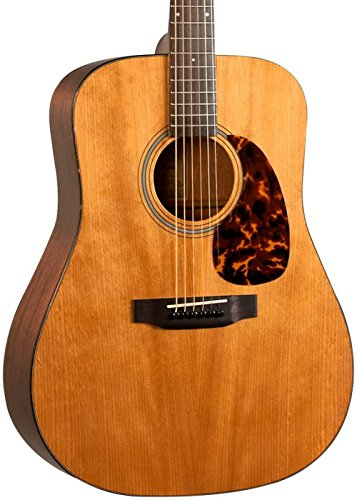 Recording King RD-T16 Torrefied Dreadnought Guitar ()
