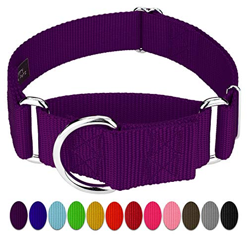 Country Brook Design 10 1 1/2 Inch Martingale Heavyduty Nylon Dog Collars (Extra Large, 1 1/2 Inch Wide, Purple)