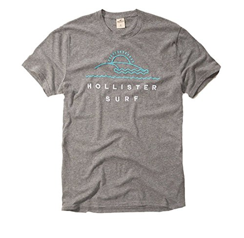 Hollister Men's Tee Graphic T-Shirt V Neck (XL, Gray 064)