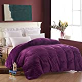 LJ-BT Flannel Duvet Covers, Reversible Thick Solid Color Quilt Cover, Single Washed Plush Quilt Cover, Fade-Resistant, Zipper Close-J 220x240cm(87x94inch)