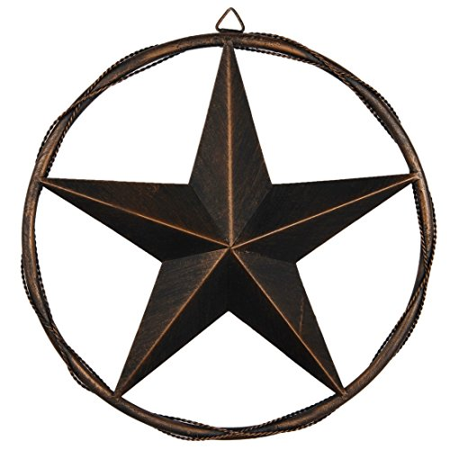 Rustic Star Decor (13