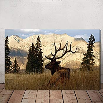 VVOVV Wall Decor Deer Pictures Elk Wall Art Wildlife Animal Painting Art Print on Canvas Stretched Framed Ready to Hang 16