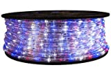 Brilliant Red White and Blue 120 Volt LED Rope Light - 148 Feet