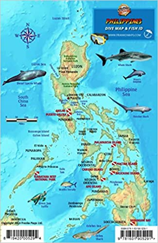 Philippines Dive Map & Coral Reef Creatures Guide Franko Maps ...