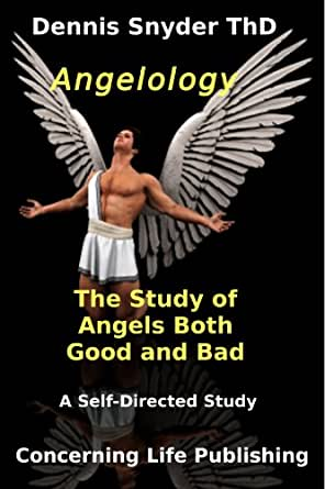 angelology the study of angels good and bad looking at life through the grid of the bible. Black Bedroom Furniture Sets. Home Design Ideas