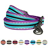 Blueberry Pet 8 Colors 3M Reflective Multi-colored Stripe Dog Leash with Soft & Comfortable Handle, 4 ft x 1'', Violet & Celeste, Large, Leashes for Dogs