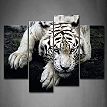 First Wall Art - Black And White White Tiger Lie On Rock Wall Art Painting Pictures Print On Canvas Animal The Picture For Home Modern Decoration