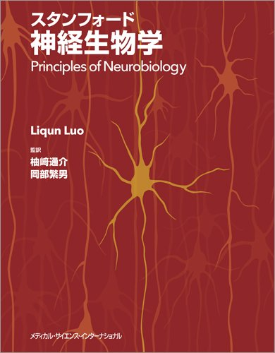スタンフォード神経生物学