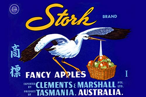 Stork Gift Delivery (Stork Fancy Apples Tasmania, Australia 24x36-inch Wall Decal)