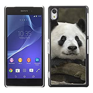 Carcasa Funda Case //Panda V0000245// Sony XPERIA Z2 L50W