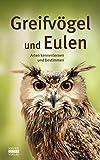 Greifvögel und Eulen: Arten kennenlernen und bestimmen