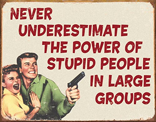 Stupid People Sign (Ephemera - Stupid People Tin Sign 16 x 12in)