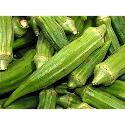 Dwarf Long Pod Green Okra Seed - 5 Grams : Okra Plants : Garden & Outdoor