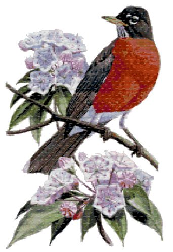 Connecticut State Bird (American Robin) and Flower (Mountain Laurel) Counted Cross Stitch Pattern