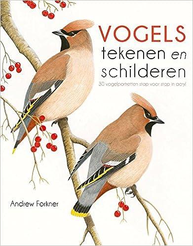 Vogels Tekenen En Schilderen Vogelportretten Stap Voor Stap In