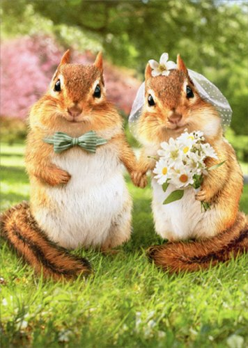 Chipmunk Bride And Groom - Avanti Funny Wedding Card