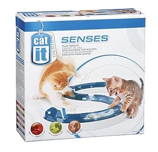 Catit Design Senses Play Circuit, Original (B001LWRFW2) | Amazon Products